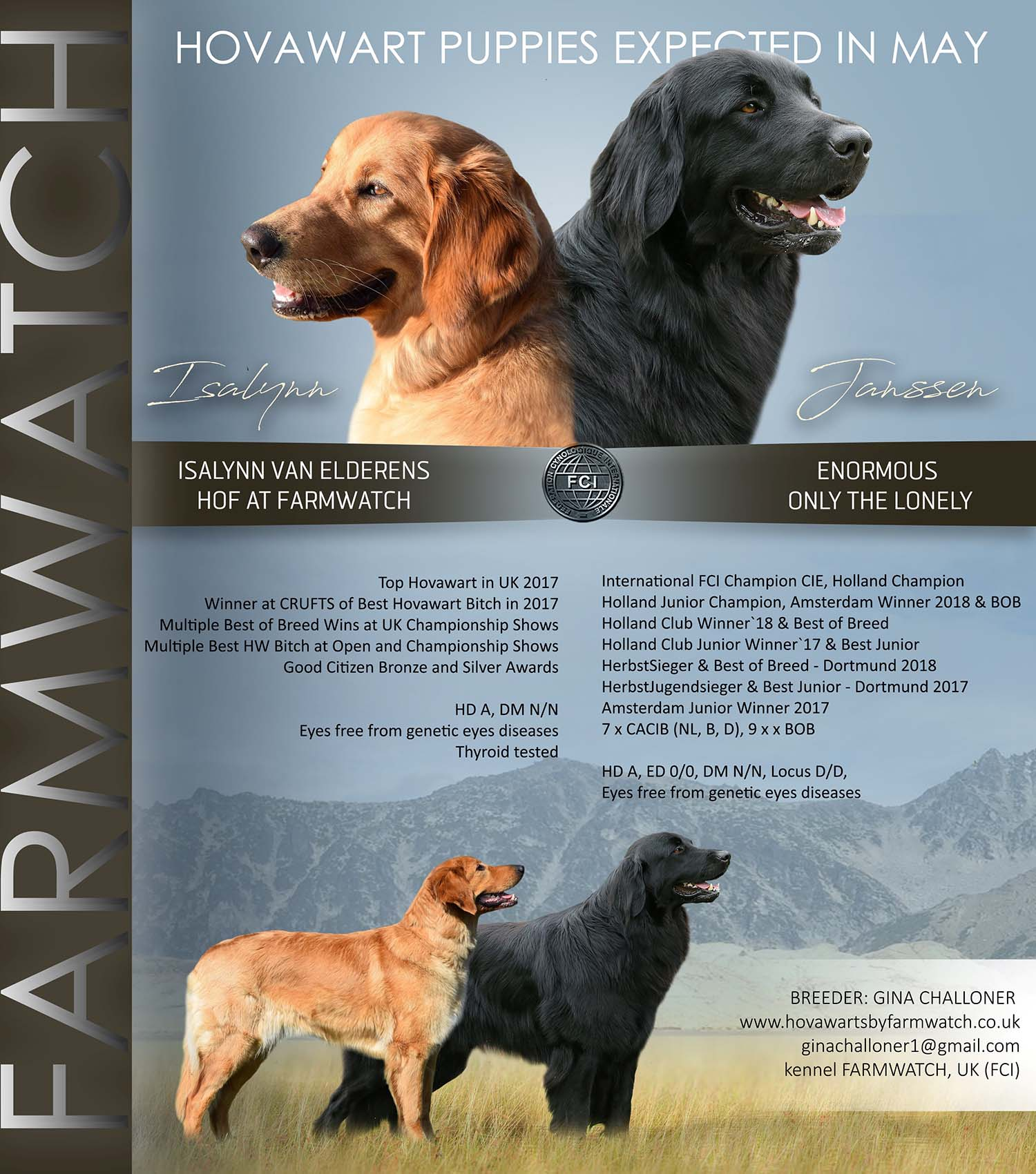 UK Breeder of Hovawarts | Hovawarts by Farmwatch